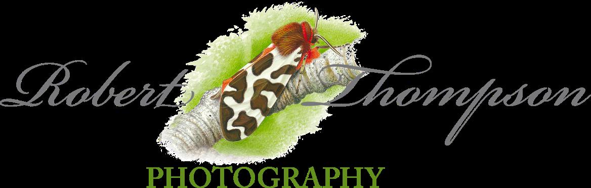 Robert Thompson Logo